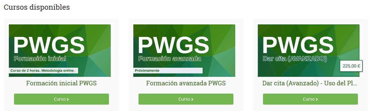Cursos PWGS online